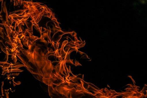 На ферме в Смоленской области произошел пожар — сгорели 24 коровы