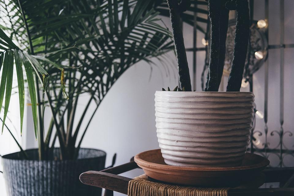 Dekoration, Stueplanter, Planter, Gryder, Vase
