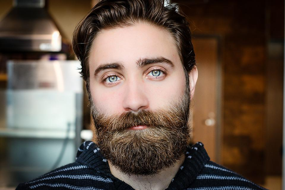beard face man free photo on pixabay