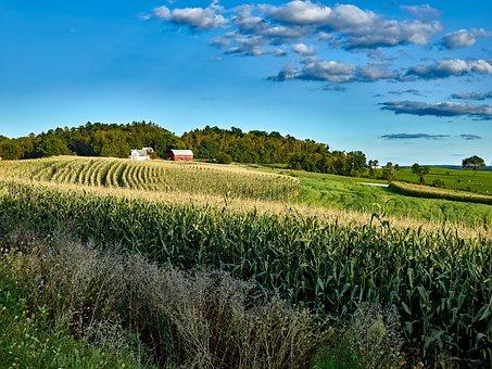 Wisconsin, Landscape, Scenic, Nature