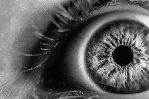 qué es la iridología