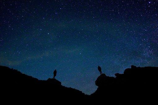 Backlit, Stars, Night Sky