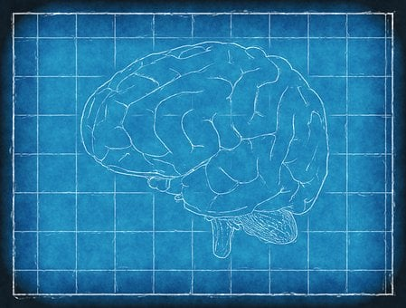 Blueprint images pixabay download free pictures brain blueprint thinking analysis intellig malvernweather Gallery