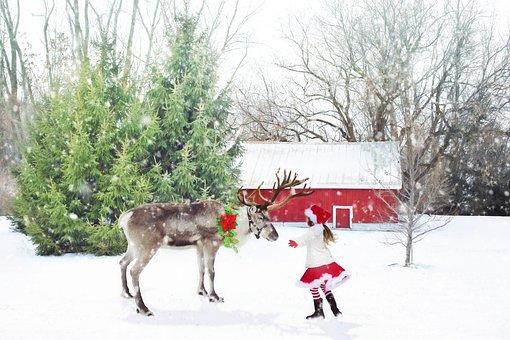 Christmas Scene, Reindeer, Little Girl