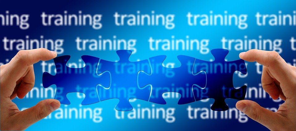Training, Education, Learn, Profession, School