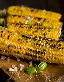 Agriculture, Close-Up, Corn, Delicious