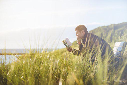 Man, Bench, Grass, Reading, Alone, Book