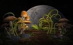 plants, mushrooms, garden