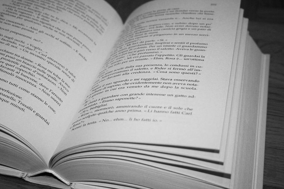 Libro Pagina Pagine Libro Aperto Storia Scritte