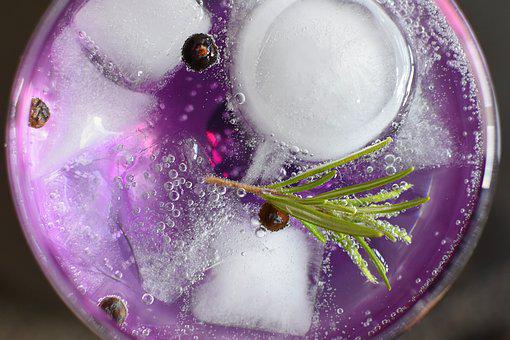 Gin Tonic, Alcohol, Glass, Drink