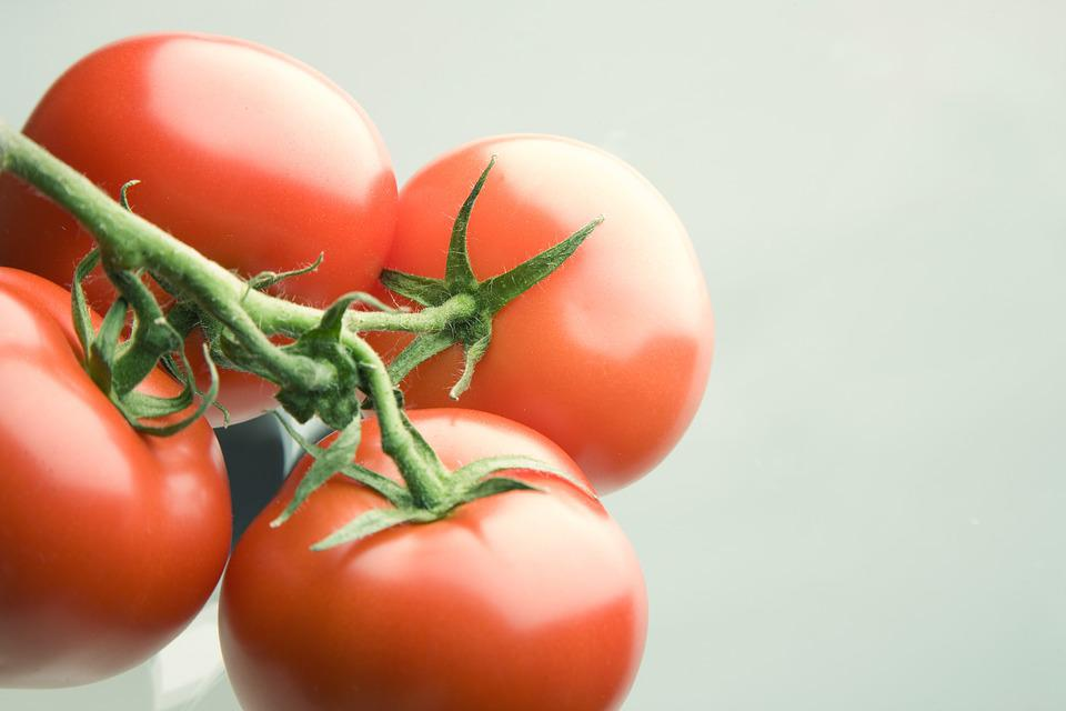 tomaat is fruit