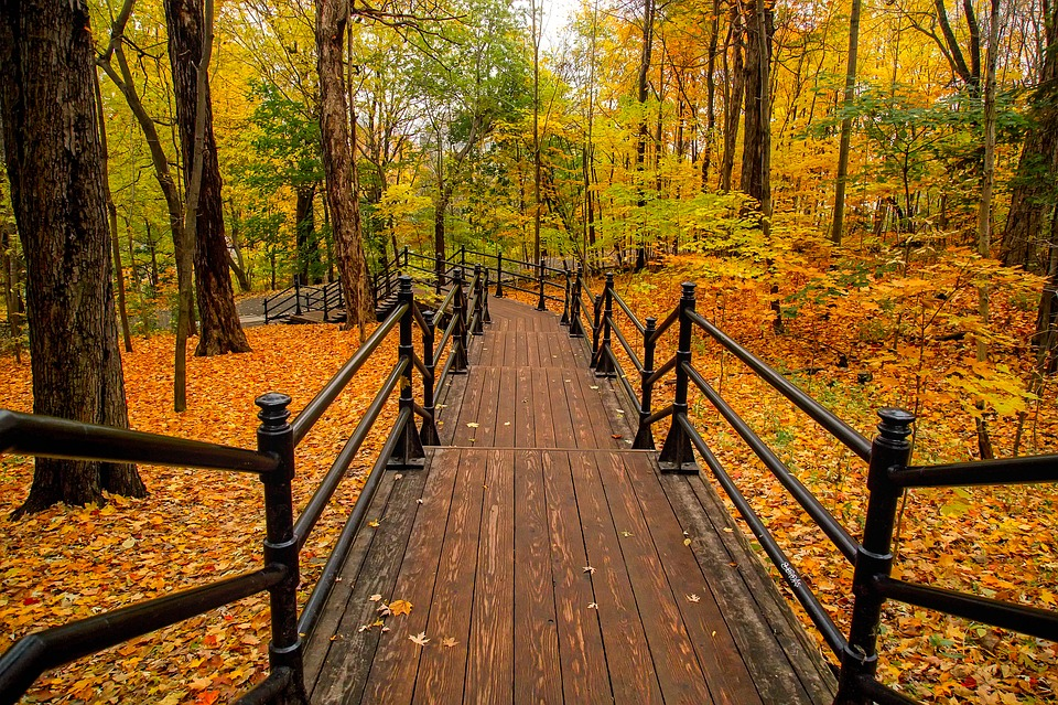 Kanada Herbst Farben Kostenloses Foto Auf Pixabay