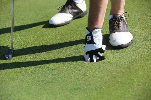 Golf, Putting, Green, Hole, Lifestyle