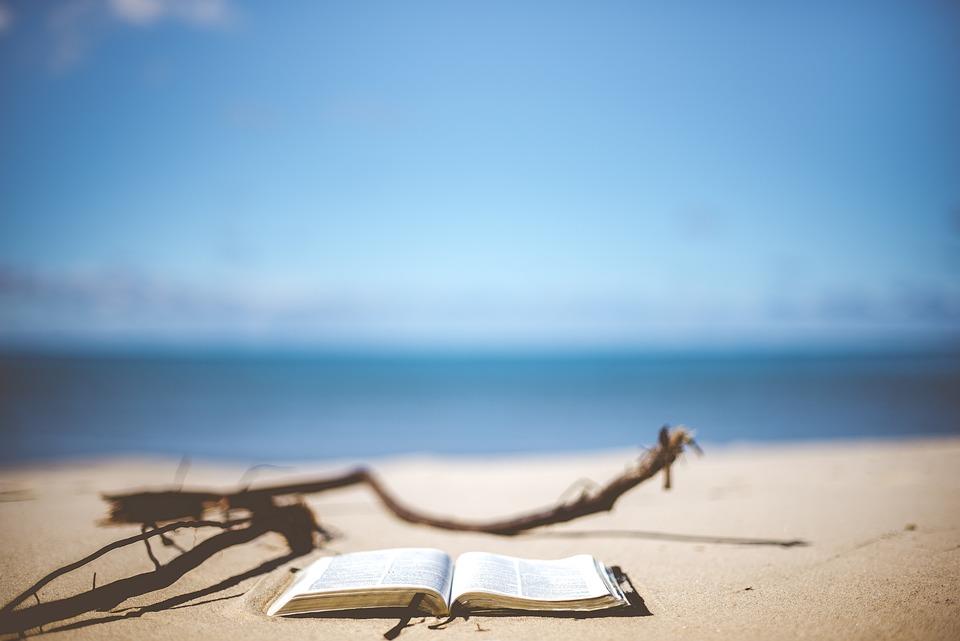 Playa, Libro, La Lectura, Vacaciones, Difuminar
