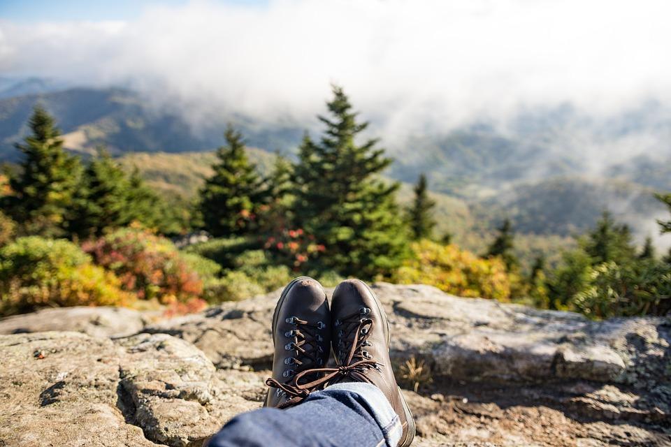 アドベンチャー, ブーツ, 針葉樹, デニムパンツ, モミの木, 霧, 草, かすんでいます, 山, 暗い