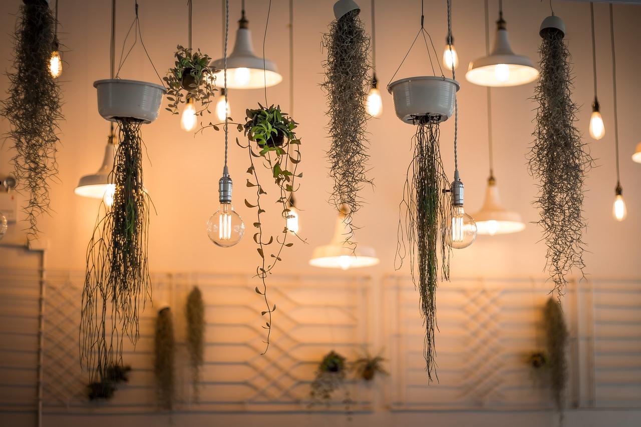 dekorácie žiaroviek