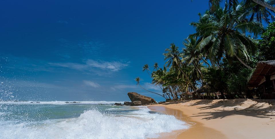 Beach, Alberi Di Cocco, Idilliaco, Isola, Ocean, Relax