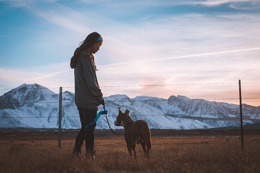 Dog, Girl, Fence, Pet, Owner, Companion