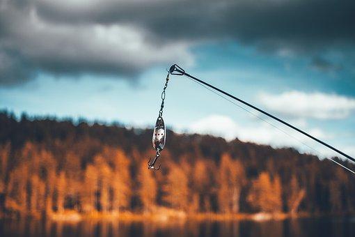 Bait, Daylight, Fishing, Fishing Rod