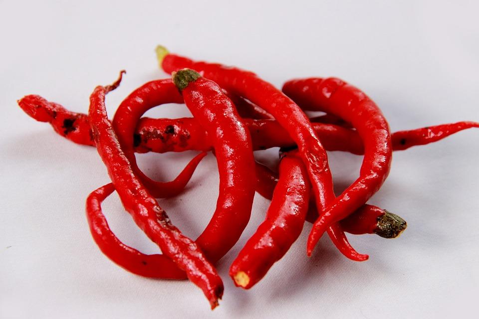 Chili Bilder chili bilder wärme gemüse kostenloses foto auf pixabay