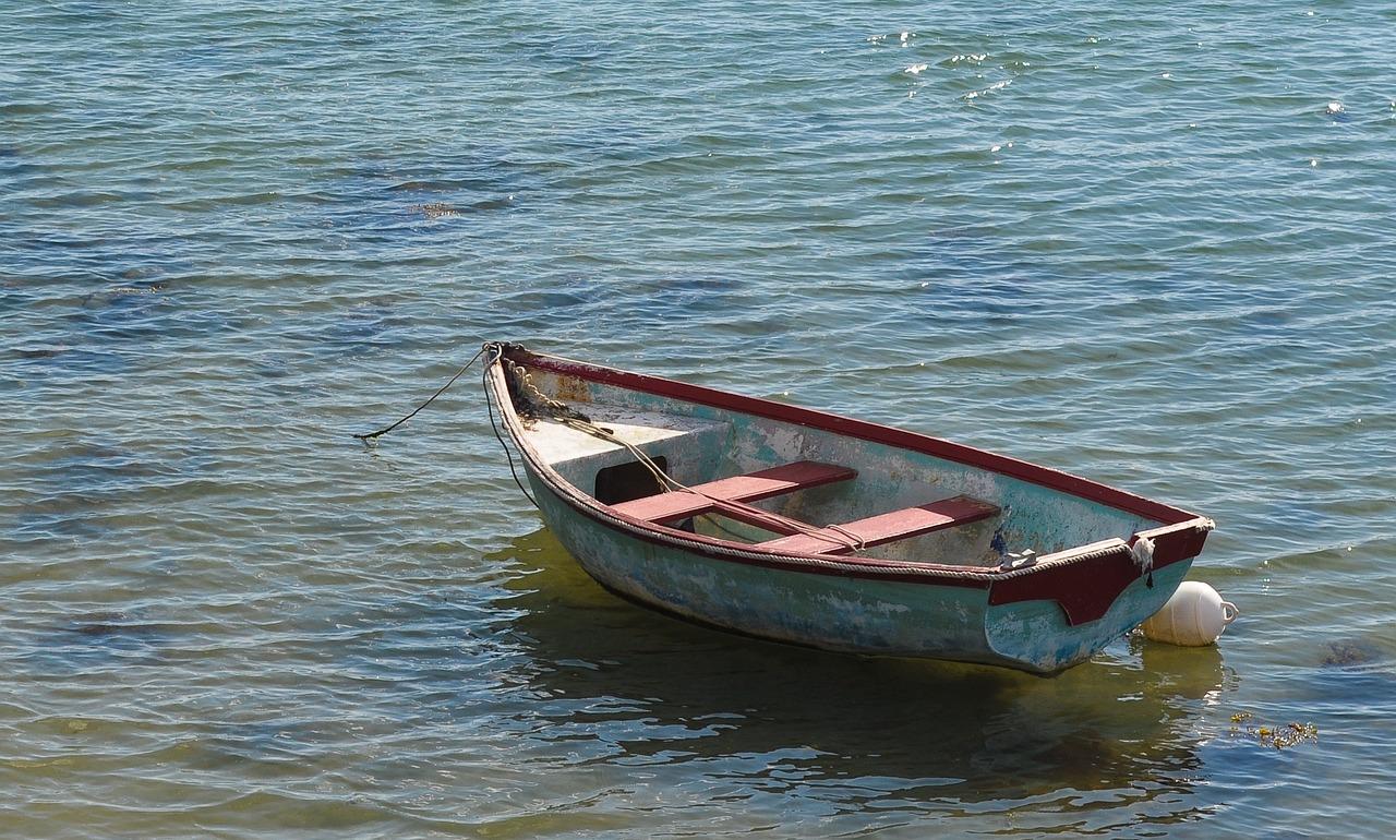 Длиннохвостые лодки