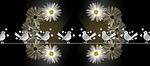 daisy, bird, twitter