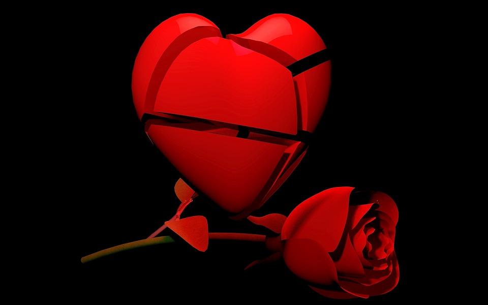 Kalp Gül Kırık Kırmızı - Pixabay'de ücretsiz resim