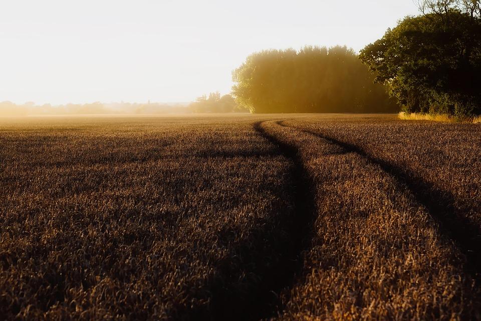 free photo england landscape scenic sunrise free