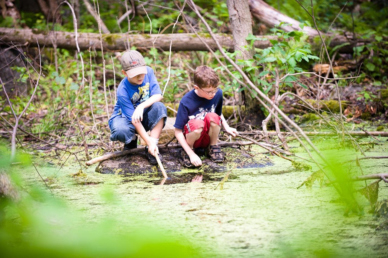 два брата сделали фотосессию в болоте производстве фотоштор