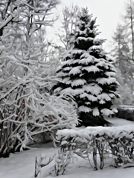 Suluboya Kış Boyama Pixabayde ücretsiz Resim
