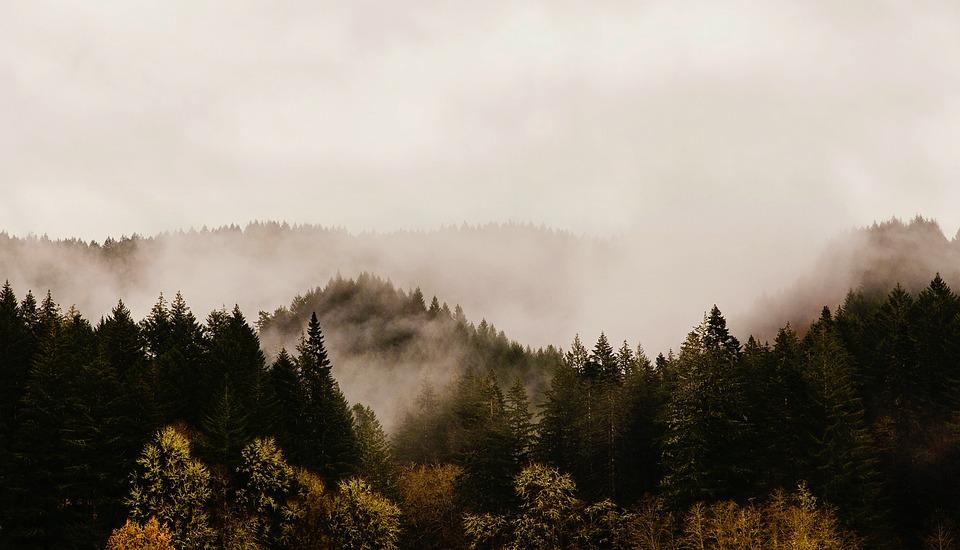 Western Oregon Image