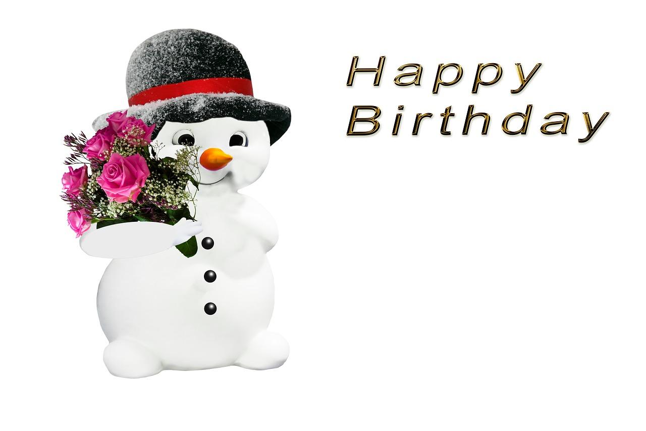 Зимний день рождения картинки, цвергшнауцерами