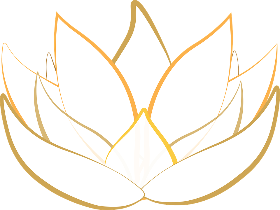 https://cdn.pixabay.com/photo/2016/12/07/15/50/lotus-1889735_960_720.png
