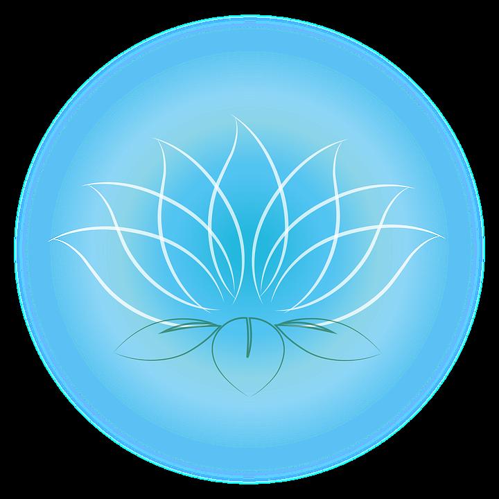Lotus Bleu Images Vectorielles Gratuites Sur Pixabay