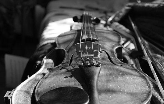 Violin Images Pixabay Download Free Pictures