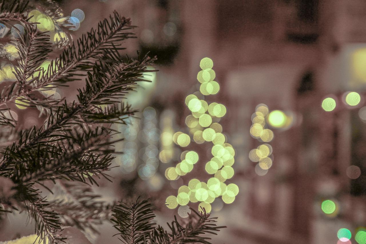 образом, боке фото новогоднее хилари может быть