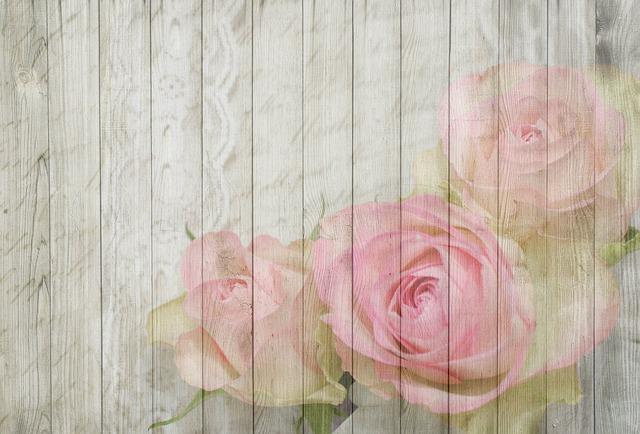 On Wood Rose Bloom 183 Free Image On Pixabay