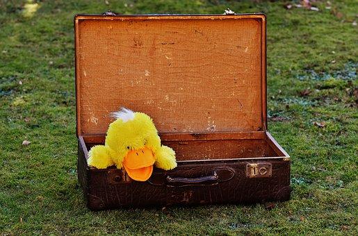 Bagagem, Antiguidade, Pato, Engraçado