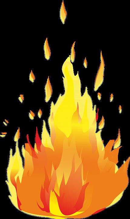 Koster ǁ�焰 183 Ņ�费矢量图形pixabay