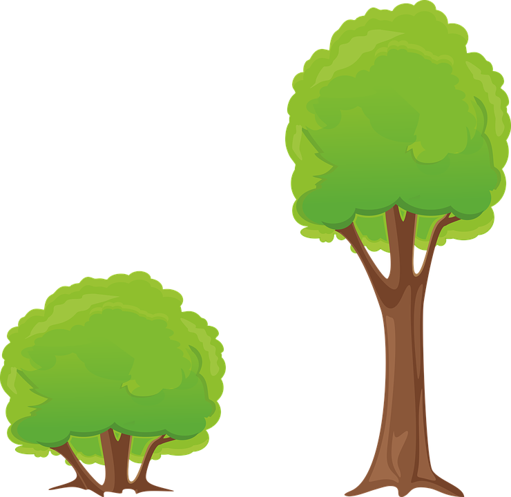 tree bush clipart free image on pixabay rh pixabay com clip art forest pictures clip art for estate sale
