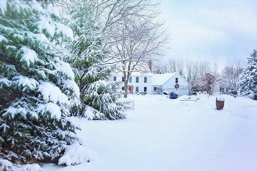 Heavy snow on floor, trees and a house