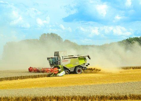 Combine Harvester, Agriculture, Harvest