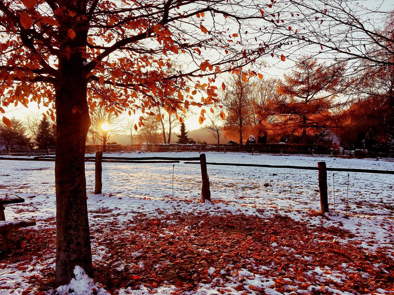 осень картинки со снегом процессами изготовления