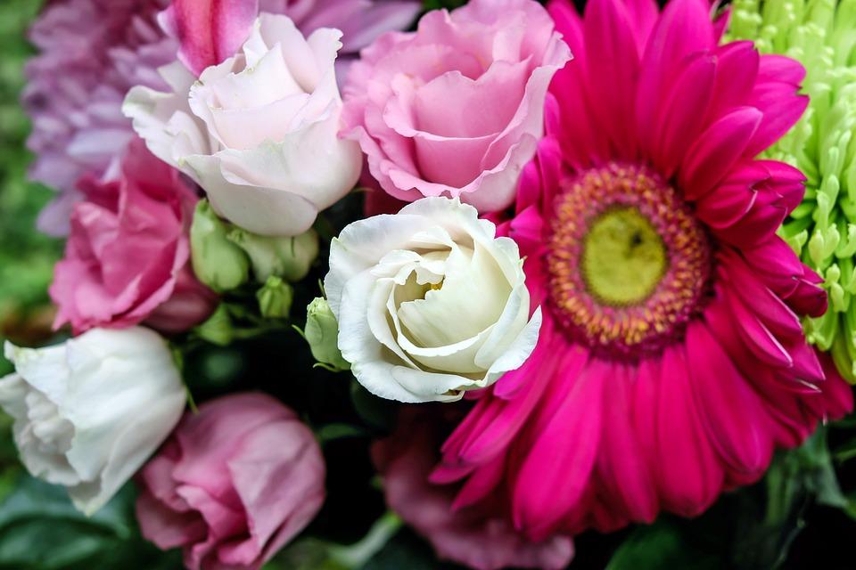 Lisianthus flower bloom free photo on pixabay lisianthus flower bloom white pink tiresome mightylinksfo