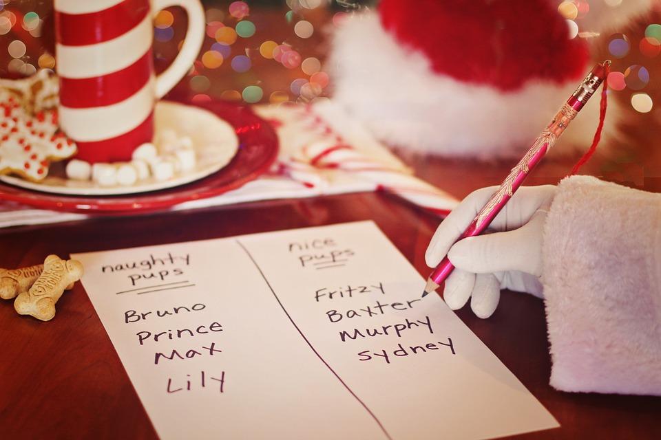 Santa, List, Christmas, Dogs, Pups, Naughty, Nice, Wish