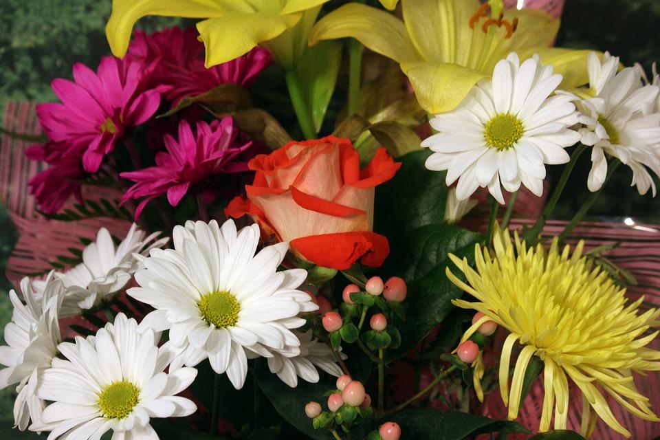 Flower Bouquet Rose Daisy · Free photo on Pixabay