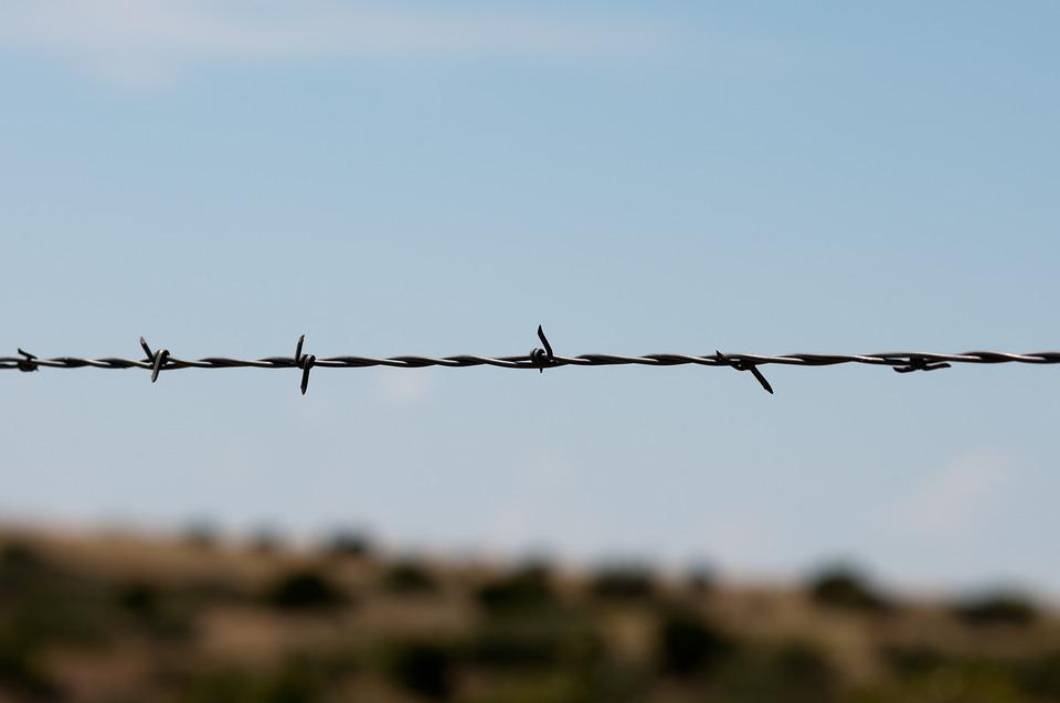 Barbed Wire Fence Sharp · Free photo on Pixabay