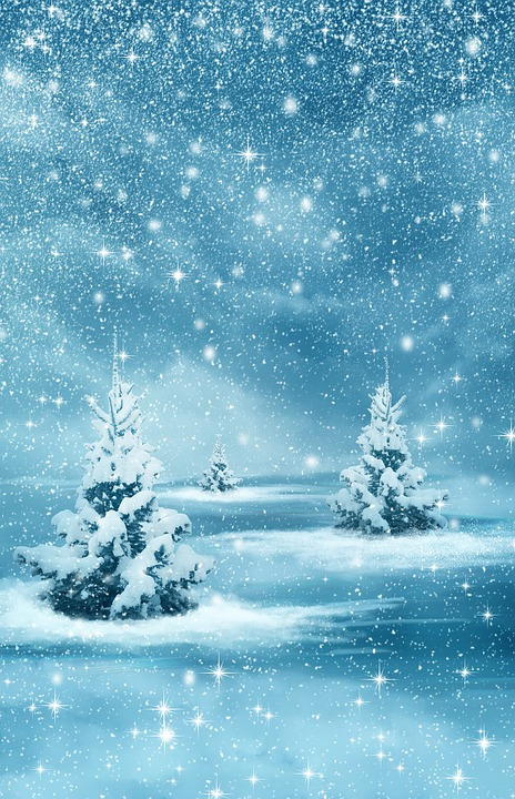 christmas new year background winter nature forest