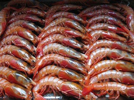 Вьетнам улучшит качество креветок и пангасиуса