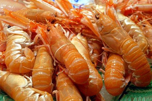 Food Prawn Seafood Shrimp Fish Fresh Healt